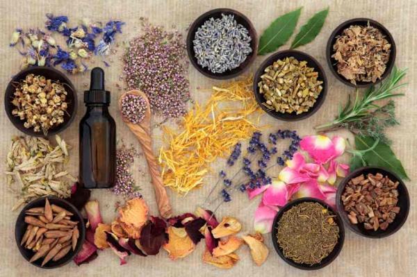 Травы и специи – аромат эротики